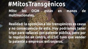 #MitosTransgénicos – Parte III